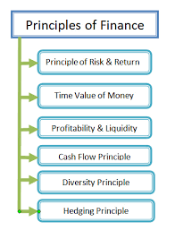 6 Core Principles of Finance You Should Know [2020] - ORDNUR